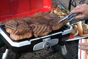 Cuisinart Portable Tabletop Gas Grill Review