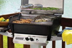 natural gas grill model